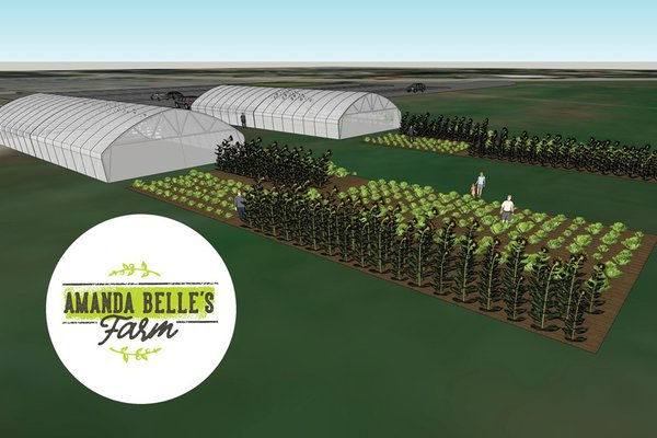 A rendering shows an image of Amanda Belle's Farm.