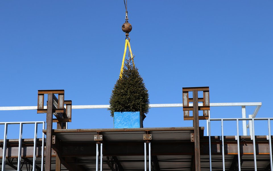 A tree placed for the topping out ceremony